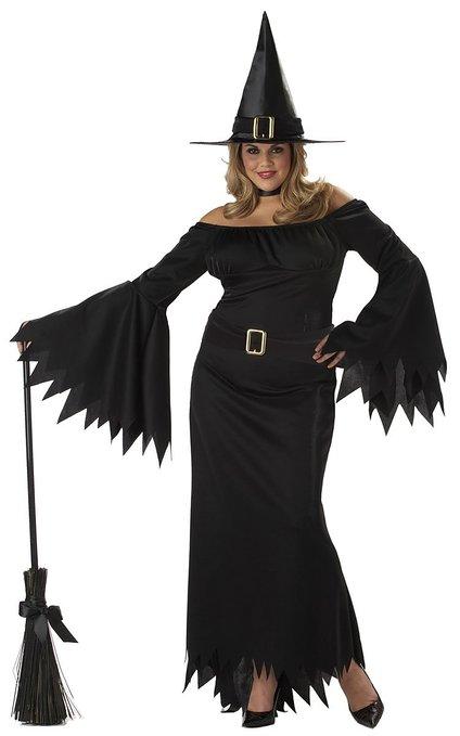 California Costumes Women's Elegant Witch Costume