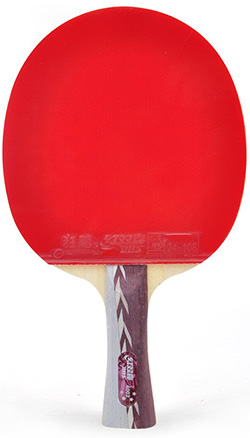 20. DHS Table Tennis Racket #A4002