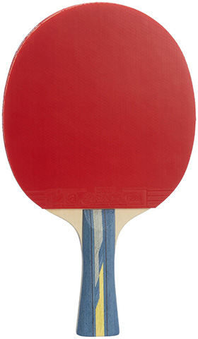 12. DHS Professional Quick-attack X Series Table Tennis