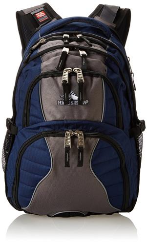 4.High Sierra Swerve Backpack