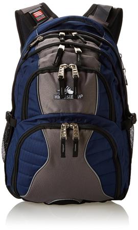 4. High Sierra Swerve Laptop Backpack